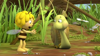 Maya the Bee: Season 1: Judge Beeswax / Crack!